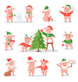 pig in christmas hat as symbol new year 2019 vector image vector image