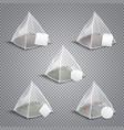 pyramid tea bags realistic transparent vector image vector image