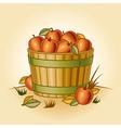 Retro bushel of apples vector image vector image