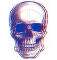 skull 3d vector image vector image