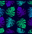 tropical leaf monstera seamless pattern black vector image vector image