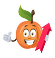 apricot with arrow sign on white background vector image