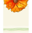 background with red poppy flower vector image vector image