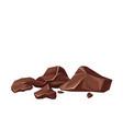 broken chocolate pieces vector image