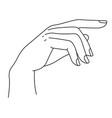 elegant hand with fingers minimalist palm line vector image