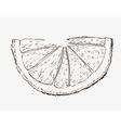 Fruit design vector image