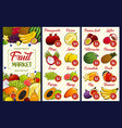 fruit price farm market or store menu vector image vector image