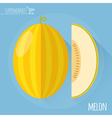 Honey melon icon vector image vector image