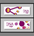 scientific brochure design template flyer layout vector image vector image