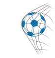 Soccer ball with net vector image