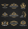 vintage royal heraldic monogram and frame logo vector image vector image