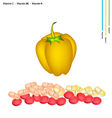 Yellow Bell Peppers with Vitamin C B6 and K vector image