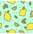 Bright lemons and leafs background vector image vector image