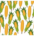 colorful background with pattern of corncobs vector image vector image
