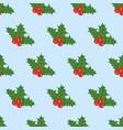 mistetoe seamless pattern vector image