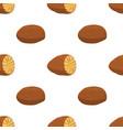 nutmeg organic nut food seamless pattern vector image vector image