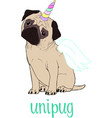 pug dog cartoon cute friendly fat vector image