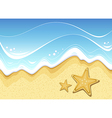Starfish on the beach vector image vector image