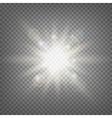 Summer sun light effect vector image vector image