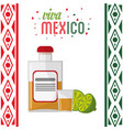 viva mexico invitation party tequila vector image vector image