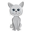 cat cartoon vector image vector image