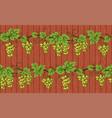 grape on wood seamless vector image