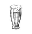 hand drawn glass with foam bubble beer vector image vector image