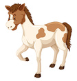 Horse with brown and white fur vector image vector image