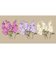 set lilac vector image vector image