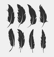 set of old feather for writing vector image