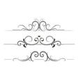 Swirly Divider vector image