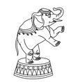 elephant circus entertainment balance icon vector image