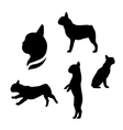 French bulldog silhouettes vector image