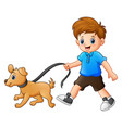 little boy walking with his dog vector image