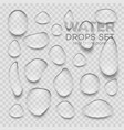 realistic transparent water drops vector image vector image