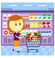 Woman Grocery Shopping vector image vector image