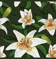 lily tiger type on green leaves nature pattern vector image