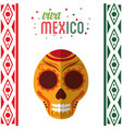 viva mexico invitation party vector image vector image