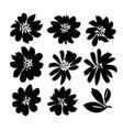 brush flowers set ink drawing flower vector image