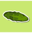 ColoredCucumber vector image vector image