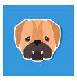 dolorous muzzle of english bulldog drawn art icon vector image