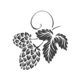hops glyph beer brewing ingredient design vector image