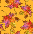 Seamless pattern of autumn maple leaves vector image vector image