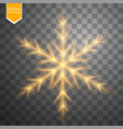 shine gold snowflake with glitter isolated on vector image vector image