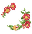 bright red frames with big pomegranate flowers vector image vector image