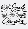 champion and sport hand written typography vector image vector image