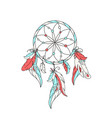 dreamcatcher feathers vector image