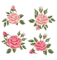 Floral elements with vintage roses Decorative vector image