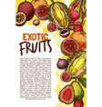 fruit shop sketch poster of exotic fruits vector image vector image