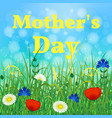 happy mothers day background of a blooming meadow vector image